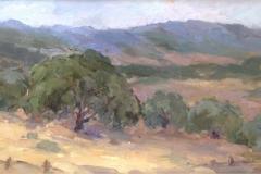 California Oaks 8x16