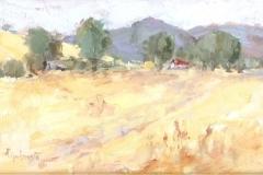 Golden Field  10x12
