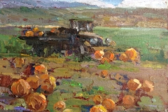 Pumpkin Patch NFS