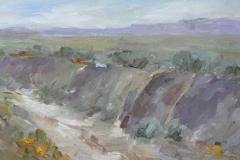Desert Creek  8x16