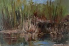 River Reeds  11x14
