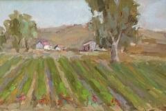 Strawberry Fields  8x16